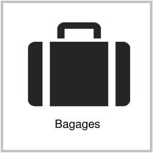 bagages-vtc-aeroport-gare